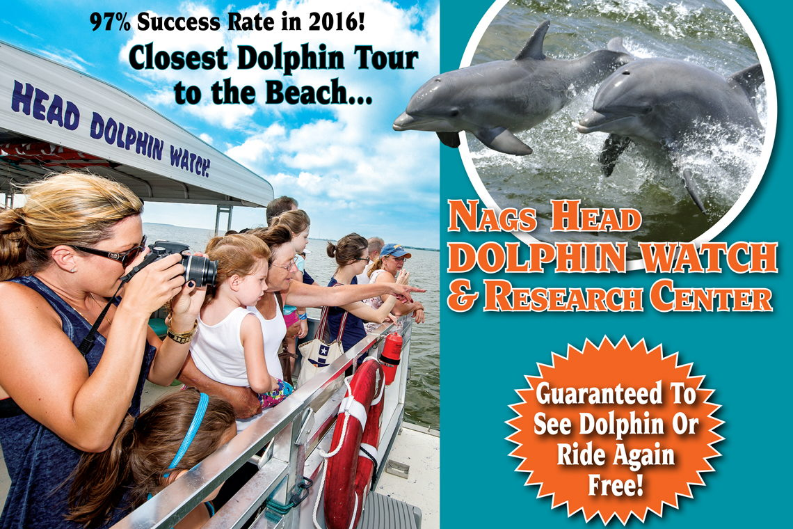 Nags Head Dolphin Watch